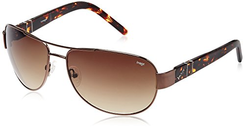 Image Aviator Sunglasses (Brown) (IMS288C4SG)