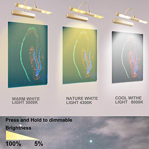 LUXSWAY Picture Light Wireless Battery Operated Remote Control Lights Heads Rotatable 180 Degree Auto Off Time Preset Dimmable LED Lighting for Artwork/Pictures/Diplomas-Gold by LUXSWAY (Image #2)