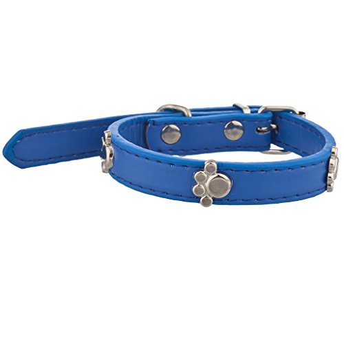 Lux Accessories Tag Pet Collar for Small Leash Dogs and Cats Blue (Lizzy One Light)