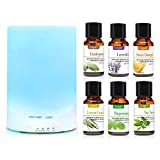 Cosprof Aroma 300ML Essential Oil Diffuser Night Light Ultrasonic Air Humidifier with AUTO Shut Off and 6-7 Hours Continuous Diffusing & 6 Pack Essential Oils