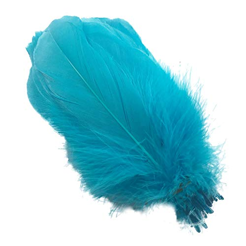 Sowder Natural Goose Feathers Clothing Accessories Pack of 100(Turquoise)