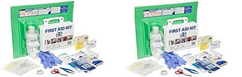 PhysiciansCare by First Aid Only 25 Person/160 Piece First Aid Kit and 16 oz Eye Wash Station, 24-500 (2-Pack)