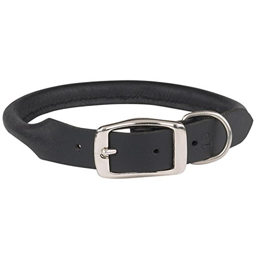 "Casual Canine Rolled Leather Dog Collar, Fits Necks 16"" to 18"", Black"