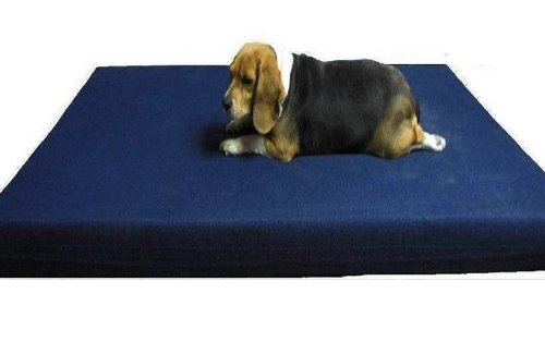 The Largest 55″X47″X4″ XXXL Jumbo 100% Orthopedic Memory Foam Pad Pet Bed for Big Dog with Waterproof internal cover and Heavy Duty Denim external cover, My Pet Supplies