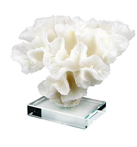 (COMLZD White Coral Flower Statue on Transparent Glass Base Home Décor Stylish Decorative Accent)