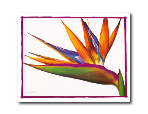 Bird Of Paradise Flower Floral Wall Picture 8x10 Art (8x10 Art Flower)