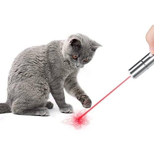 Multi-pattern Funny Cat Chaser Toy LED Light Interactive Chase Cat Toys, Used as LED Flashlight, Command Light Pet Training Tools-USB Rechargeable,Crazy chase !