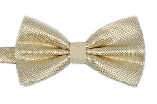 (Elegant Adjustable Pre-tied bow ties for Men Boys in Different Colors-Champagne)