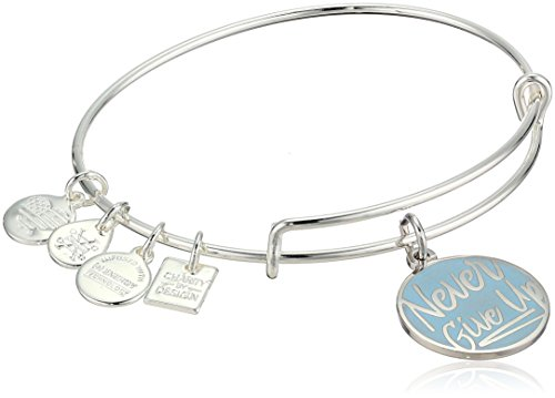 Alex and Ani Womens Charity by Design, Never Give Up Charm Bangle Bracelet, Shiny Silver, Expandable