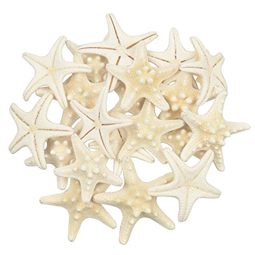 (Jangostor 20PCS Starfish Mixed Ocean Beach Starfish-Natural Colorful Seashells Starfish Perfect for Wedding Decor, Beach Theme Party, Home Decoration, DIY Craft Project, Fish Tank, Holiday Decoration)