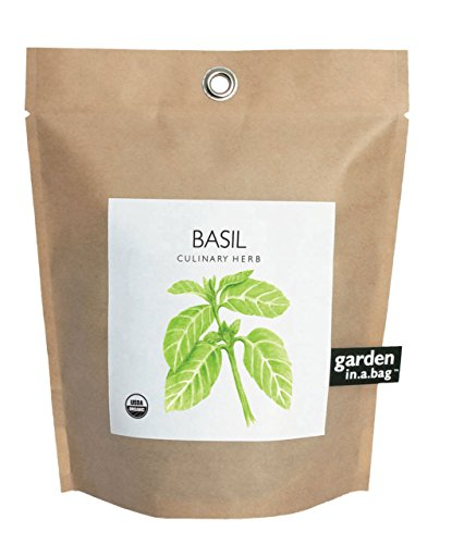 Potting Shed Creations Basil Garden-in-a-bag by Potting Shed Creations, LTD
