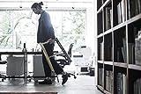 Hasegawa Ladders Lucano Step Stool Premium Edition