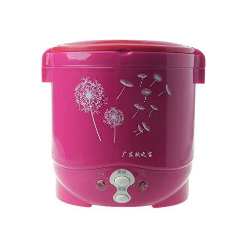 Allrise 12V Lovely Cat Car Use Electric Heating Lunch Box Mini Travel Rice Cooker Portable ,1L Meal Heater Food Warmer 150W (Red Dandelion)