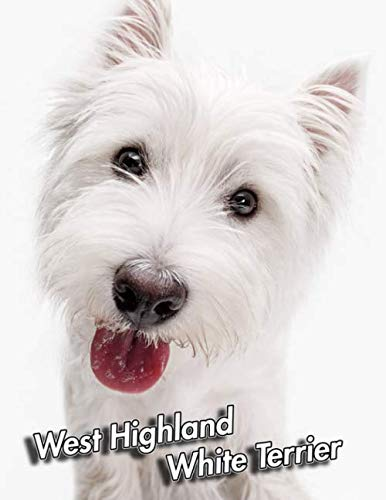 West Highland White Terrier: Composition Book 150 pages 8.5 x 11 in. | Wide Ruled | Writing Notebook | Lined Paper | Soft Cover | Plain Journal | Westie