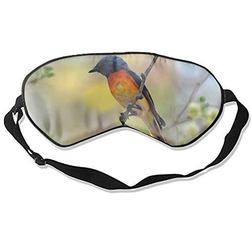 Silk Sleeping Eye Mask for Women & Men, Ultimate Sleep Aid for Travel & Night Sleep (Animal Swallow Birds Barn)