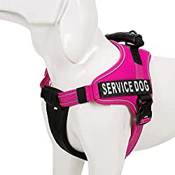 Chai's Choice Service Dog Vest Harness Best Truelove Model with 2 Reflective Patches and Sturdy Handle. Matching Padded Reflective Leash Available (X-Small, Fuchsia)