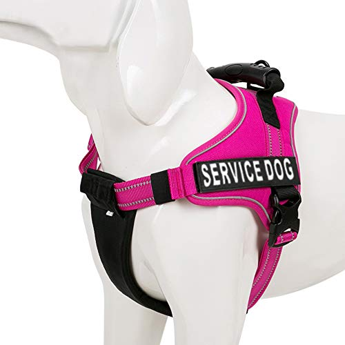 Chais Choice Service Dog Vest Harness Best Truelove Model with 2 Reflective Service Dog Patches and Sturdy Handle. Matching Padded 3M Reflective Leash Available (X-Large, Fuchsia)