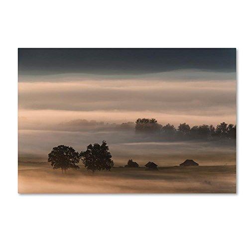 Obtuse Fog Over The Moos by Nina Pauli, 30x47-Inch Canvas Wall Art