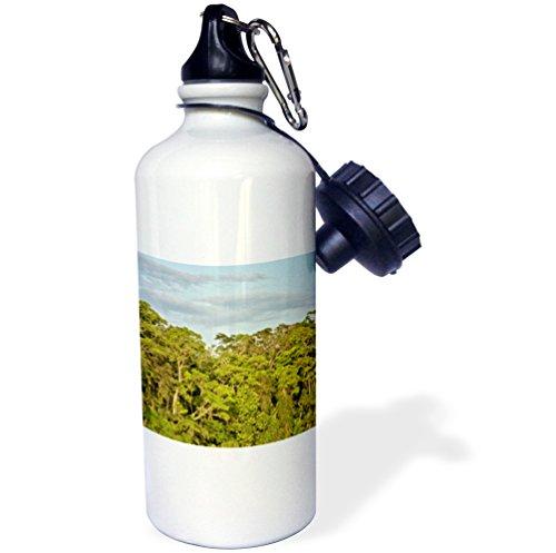 3dRose KIKE CALVO Rainforest Costa Rica Collection - Tortuguero National Park - 21 oz Sports Water Bottle (wb_234120_1) (Park National Tortuguero)