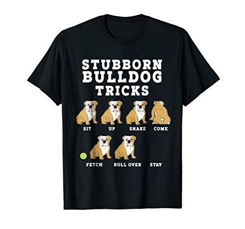 Stubborn Bulldog Tricks - Funny Dog ()