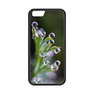 """YCHZH Phone case Of Translucent Gradual Color Raindrops 1 Cover Case For iPhone 6 Plus (5.5"""")"""