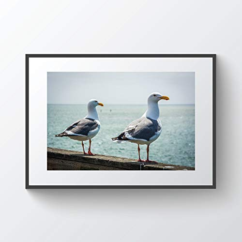 YourLoveLLC Wooden Frame Seagulls On The Pier in Santa Cruz California Photo Print Metal Framed Black Wood Frame for Wall
