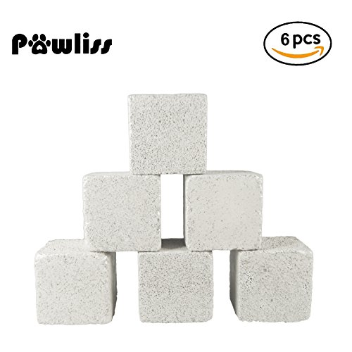 4137Q1ByBnL - Pawliss Teeth Grinding Lava Block for Hamster Chinchilla Rabbit (Pack of 6)