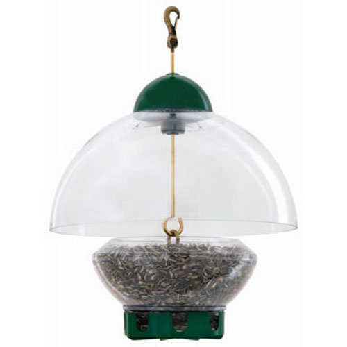 (Droll Yankees DROBTG Bird Feeder, Hanging Feeder with Adjustable Dome Cover, 15 Inch Dome, 3 Pound Seed Capacity, 8 Ports, Green, BTG)