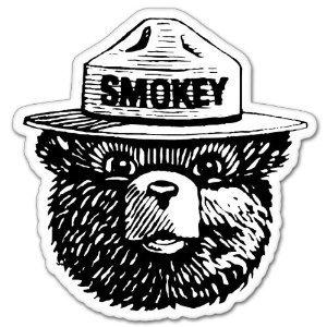 Smokey Bear Bumper Sticker Forest Fire Fighter Window, Laptop, Car, Bumper Decal