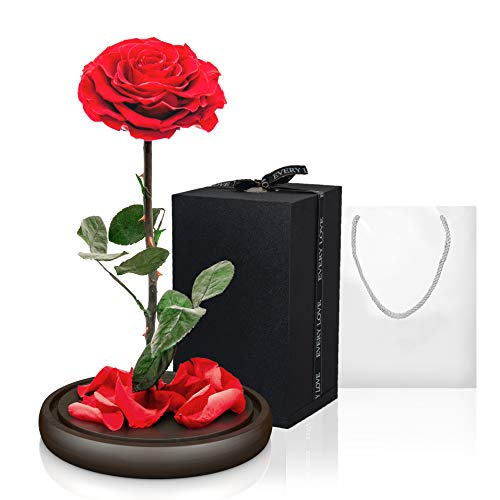 (Premium Eternal Roses Preserved Rose Enchanted Rose Forever Rose Flowers for Delivery Prime Mom Gifts Roses for delivery Prime Eternal Rose Romantic Gifts for her (Red Rose))