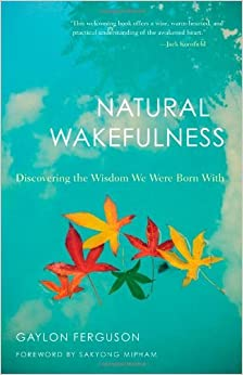 Book Natural Wakefulness: Discovering the Wisdom We Were Born with by Gaylon Jules Ferguson (2010-05-01)