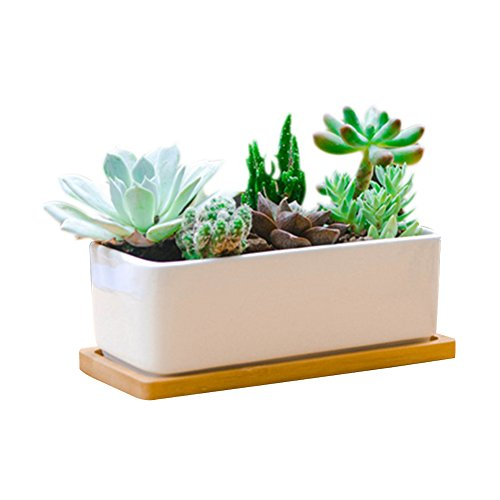 6.5 Inch Rectangle White Ceramic Succulent Planter Pot Decorative Cactus Plant Pot Flower Container with Bamboo Tray