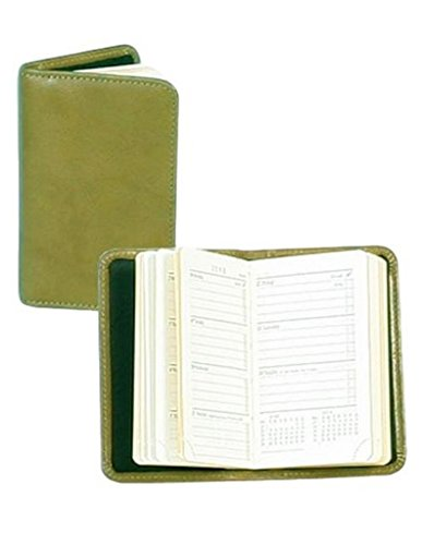 - Scully Italian Leather Personal Weekly Planner (Green)