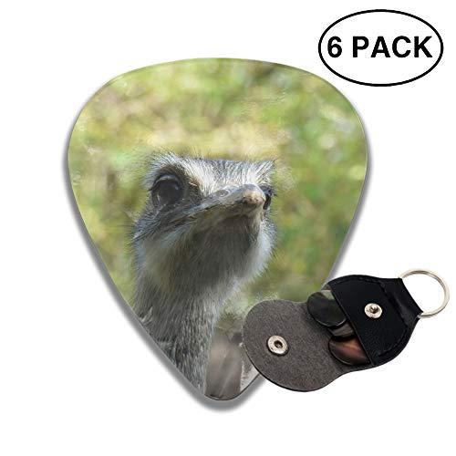 - Animal Emu Birds Celluloid Guitar Picks 3 D Print Cool 6-Pack 0.46mm 0.73mm And 0.96mm