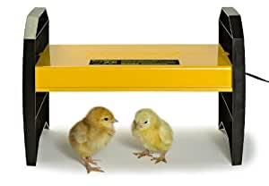 Brinsea EcoGlow Brooder for Chicks or Ducklings