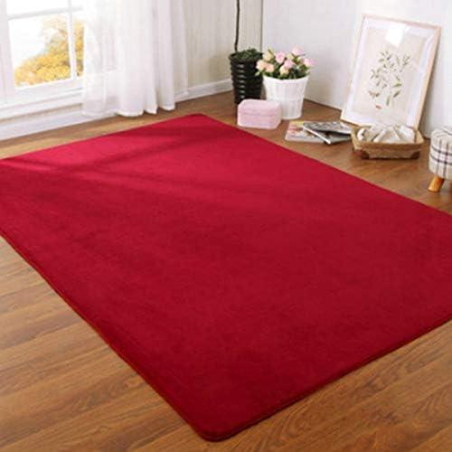Solid Color Thick Coral Velvet Carpet Modern Living Room Area Carpet Bedroom Bedside Rug Tatami Crawling Mat Home Decoration (Color : Red Wine, Size : 60x160cm(23.6x63in))