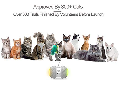 PetDroid Boltz Robotic Cat Toy Interactive,Attached with Feathers/Birds/Mouse Toys for Cats/Kitten,Large Capacity Battery/All Floors Available (Grey) 6