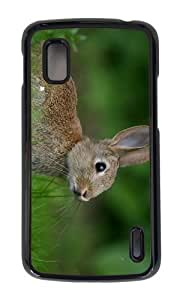 Google Nexus 4 Case,MOKSHOP Adorable rabbit meadow Hard Case Protective Shell Cell Phone Cover For Google Nexus 4 - PC Black