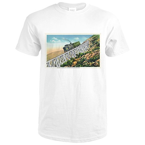 New Hampshire - Mt Washington Cog Railway, Jacob's Ladder (Premium White T-Shirt Medium)