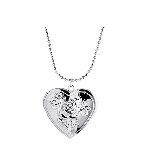 (Love Heart Flower Lockets Necklace That Holds Pictures for Women Girl Jewelry (Silver Tone))