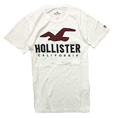 Hollister Men's Tee Graphic T-Shirt V Neck - Crew Neck (White R 195, L) from Hollister