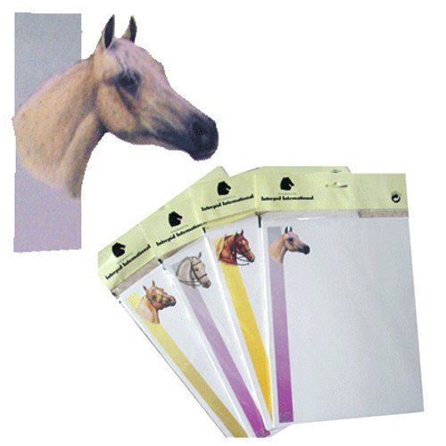 - Intrepid International Printer Paper with Arabian Horse Head (Pack Of 25 Sheets)
