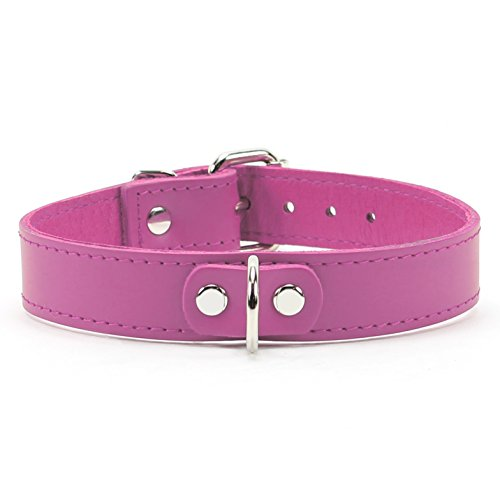 AtlasI Collar Premium Handmade Latigo Leather (Pink) by VP Leather