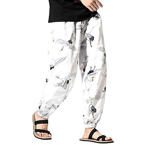 (ANJUNIE Men Printed Harem Hip Hop Pants Vintage Baggy Wide Leg Streetwear Trousers(White,XXXL))