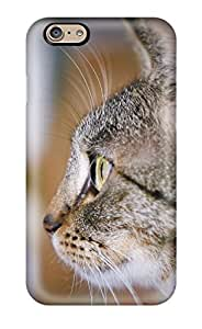 Faddish Phone Observing Cat Cute Felines Animal Cat Case For Iphone 6 / Perfect Case Cover