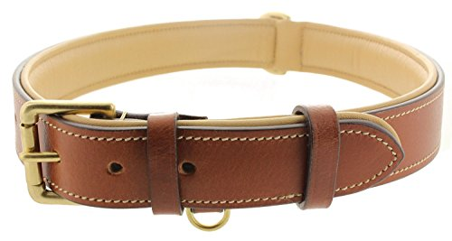 Viosi Leather Padded Dog Collar - Made of Genuine Kingston Luxury Leather [X-Large, Brown]