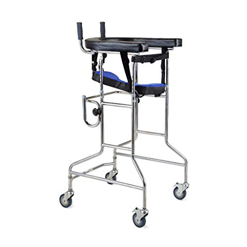 F&T Stroke Patient Rehabilitation Equipment Stand Frame Walker Elderly Walker Lower Limb Training Rehabilitation Device (Color : Black)