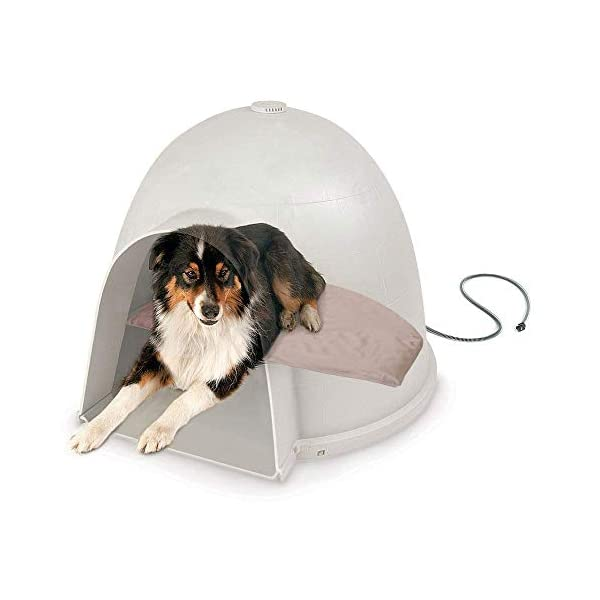 Igloo-Style-Dog-Bed