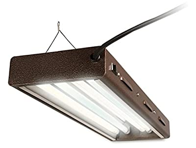 Agrobrite Designer T5, FLP 22, 48W 2 Foot, 2-Tube Fixture with Lamps