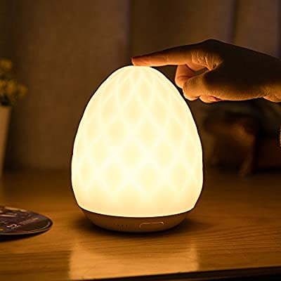 Night light for Kids, Seabiscuit Rechargeable Touch Sensor Soft Bedside Lamp, Dimmable Warm White Light & Color Changing RGB with Timer Setting (30min 45min 60min 75min 90min) for Sleeping